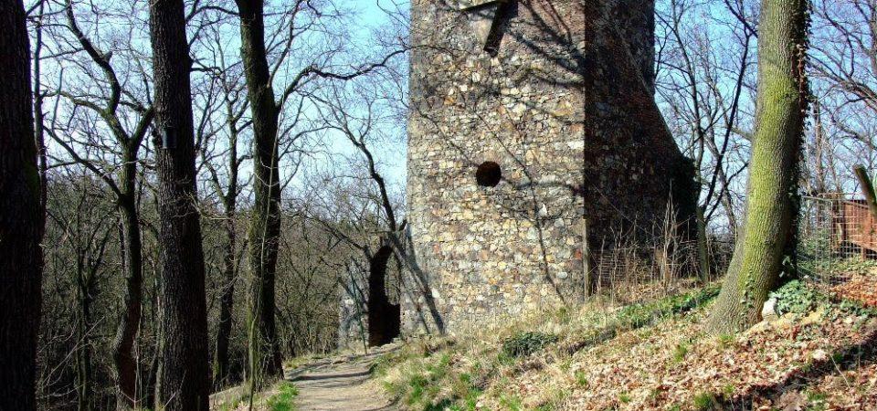 Exkurze do parku Cibulka včetně věže